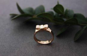 Золотое кольцо по индивидуальному эксизу
